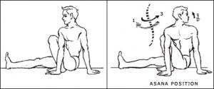 vakrasana-type2-inner-img2